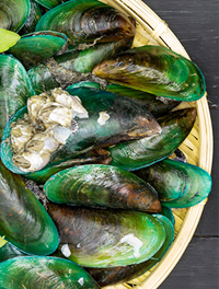 Green Lipped Mussel (Joint Health) (3)